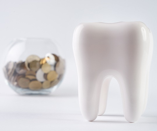 Model tooth and coin jar